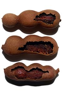 Acides de pulpe de tamarin