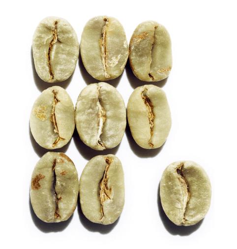 Caféine végétale